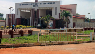 Photo of FUTA Pre-Degree Admission Form for 2019/2020 Academic Session